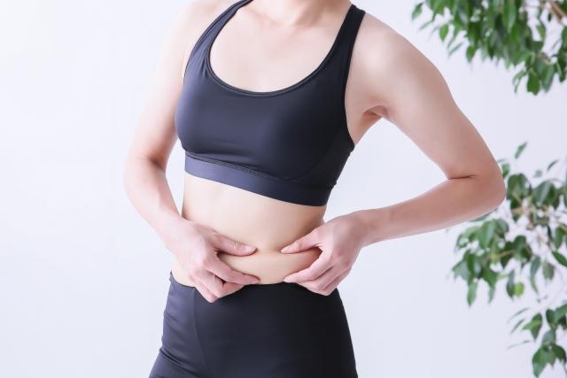 脂肪を蓄える役割のある「白色脂肪細胞」